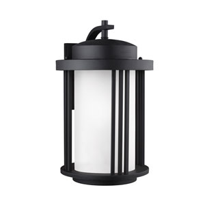 Crowell Black Energy Star LED Outdoor Wall Lantern with Satin Etched Glass