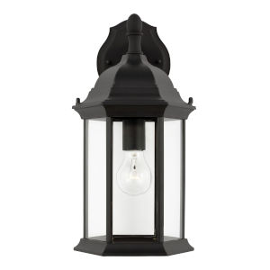 Sevier Black One-Light Outdoor Downlight Wall Sconce with Clear Shade