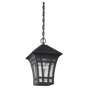 Herrington One-Light Black Outdoor Pendant