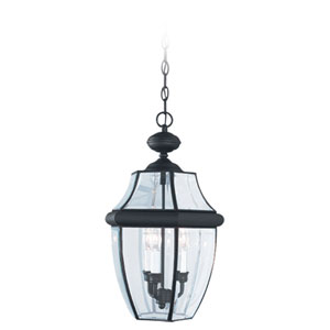 Curved Beveled Black Outdoor Hanging Pendant