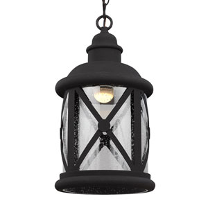 Lakeview Black LED Outdoor Pendant with Clear Seeded Glass