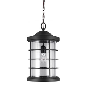 Sauganash Black One Light Outdoor Pendant with Clear Seeded Glass