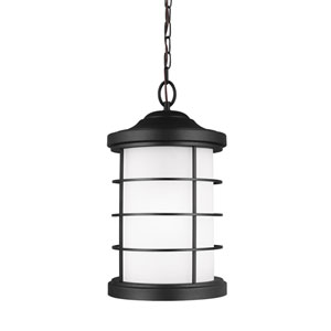 Sauganash Black One-Light Outdoor Pendant