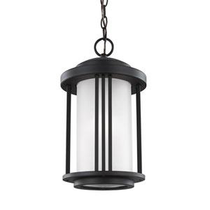 Crowell Black One-Light Outdoor Pendant