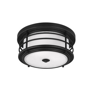 Sauganash Black Two-Light Outdoor Flush Mount