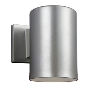 Outdoor Painted Brushed Nickel Five-Inch One-Light Wall Lantern