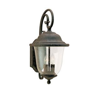 Trafalgar Oxidized Bronze 9-Inch Energy Star Two-Light Outdoor Wall Lantern