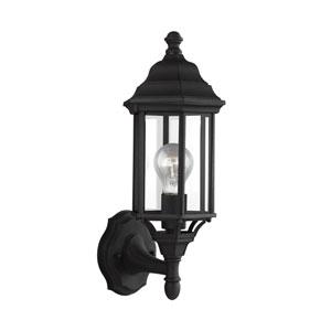 Sevier Black 6.5-Inch One-Light Outdoor Wall Lantern