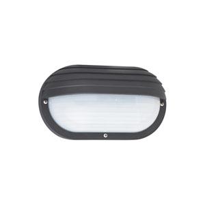 Bayside Black 10-Inch One-Light Outdoor Wall Lantern