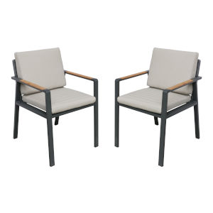 Nofi Charcoal Outdoor Patio Dining Chair with Taupe Cushions, Set of 2