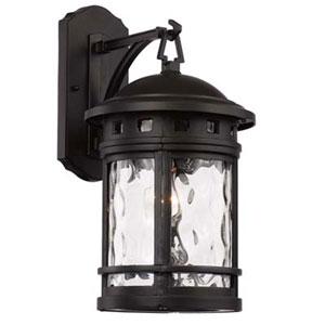 Boardwalk Black Nine-Inch One-Light Wall Lantern