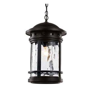Boardwalk Black 11-Inch One-Light Hanging Lantern