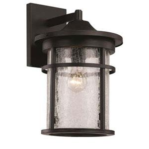 Avalon Black 11-Inch One-Light Wall Lantern