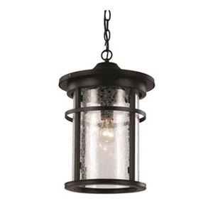 Avalon Black Nine-Inch One-Light Hanging Lantern
