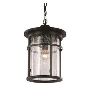 Avalon Black 11-Inch One-Light Hanging Lantern