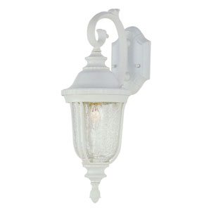 One-Light White Downlight Outdoor Wall Bracket with Crackle