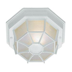 Wagoneel White 9-Inch Outdoor Flush Mount Ceiling Light