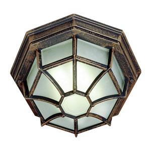 Wagoneel Rust 11-Inch Outdoor Flush Mount Ceiling Light