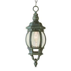 Rochefort 20 Inch Outdoor Hanging Lantern In Rust