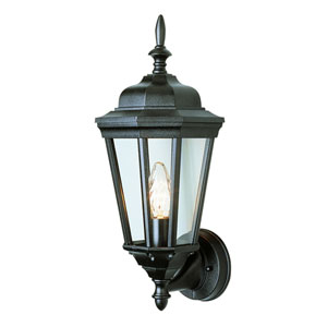 Waldorf 17 Inch Outdoor Lantern -Black
