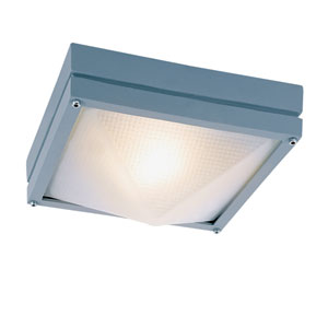 Craftsman Ho Ail Gray 8.5-Inch Outdoor Flush Mount Ceiling Light