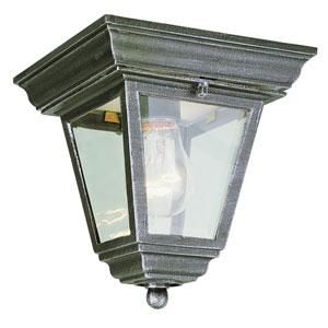 Vermont Swedish Iron 7-Inch Outdoor Flush Mount Ceiling Light