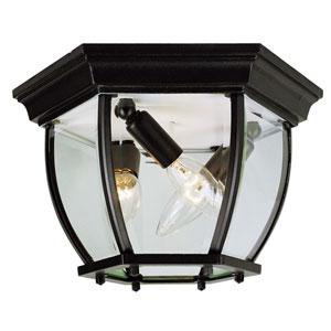 Black w/ Beveled Glass 13-Inch Four-Light Outdoor Flush Mount Ceiling Light