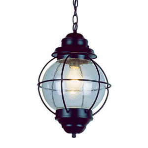 One-Light Black Medium Onion Outdoor Pendant