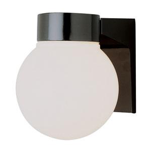 Regency Energy Efficient 6 Inch Globe Light -Black