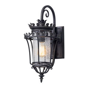 Greystone Forged Iron One-Light Outdoor Wall Lantern