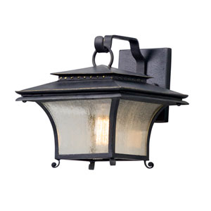 Grammercy Forged Iron 10-Inch One-Light Outdoor Wall Lantern