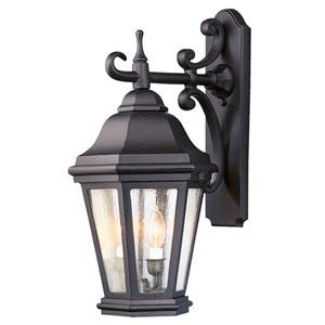 Verona Bronze Two-Light 22-Inch High Outdoor Wall Lantern