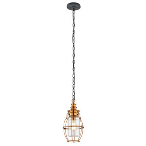 Little Harbor Aged Brass One-Light Medium Medium Pendant with Forged Black Accents and Clear Antique Glass