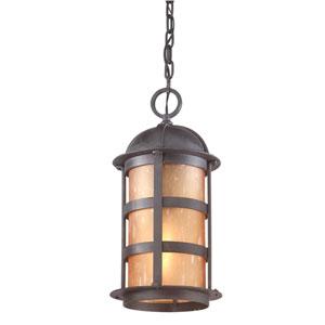 Aspen One-Light Outdoor Pendant