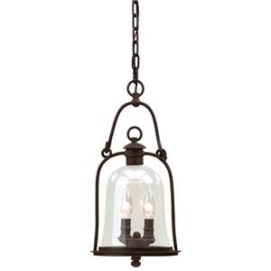 Owings Mill Medium Outdoor Hanging Pendant