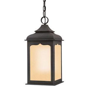 Williamsburg® Henry Street Fluorescent Medium Charred Iron Exterior Pendant