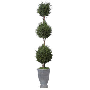 Cypress Triple Aged Gray Trees-Greenery