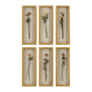 Rosalie Long Stem Shadow Box, Set of Six