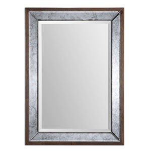 Daria Aged Pecan Stained Solid Wood Antique Framed Mirror