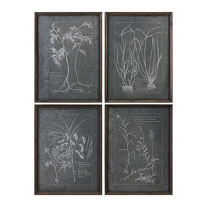 Root Study Print Wall Art, Set of 4