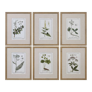 Green Floral Botanical Study Prints, Set of 6