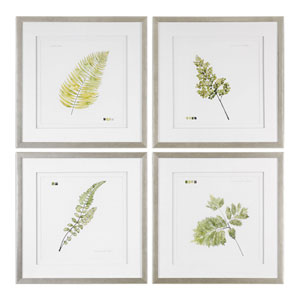 Watercolor Leaf Study Prints, Set of Four