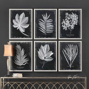Foliage Framed Prints, Set of Six