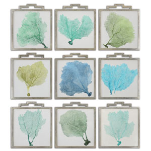 Sea Fans by Grace Feyock: 17 x 19.5-Inch Print Reproduction, Set of 9