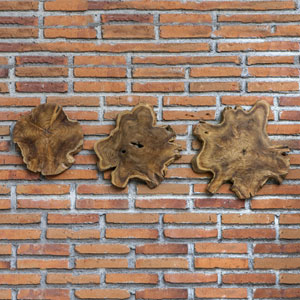 Kalani Teak Wall Art, Set of Three