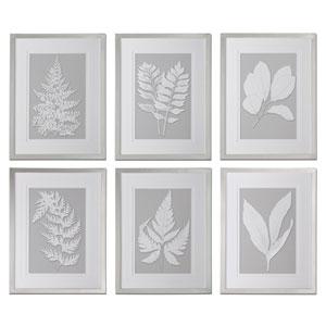 Moonlight Ferns Silver Framed Art, Set of 6
