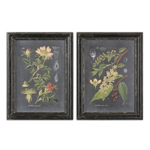 Midnight Botanicals by Grace Feyock: 24.5 x 32.5-Inch Print Reproduction, Set of 2