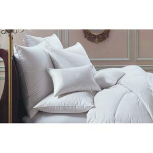 Bernina Standard Pillow
