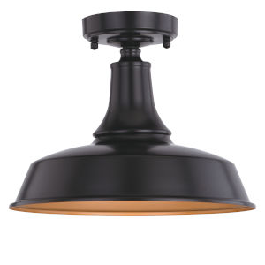 Dorado Dark Bronze and Light Gold One-Light Outdoor Semi Flush Mount