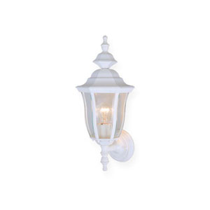 Birchard Textured White One-Light Outdoor Wall Sconce